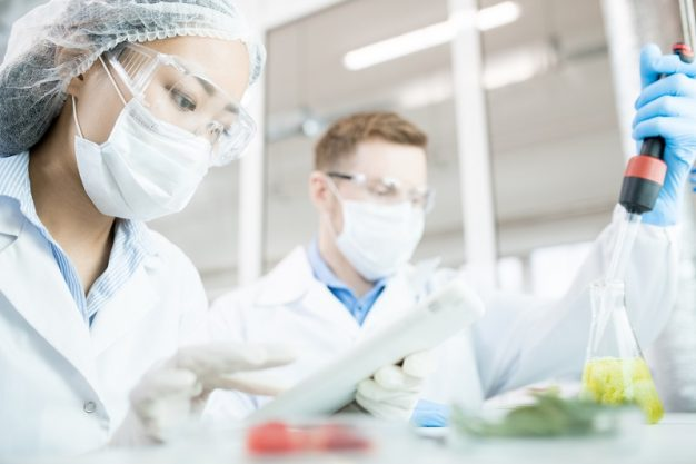 Portrait of two modern scientists wearing masks working on food research studying liquids in beaker while sitting at table in laboratory